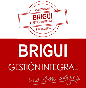 Logo de Brigui Gestión Integral